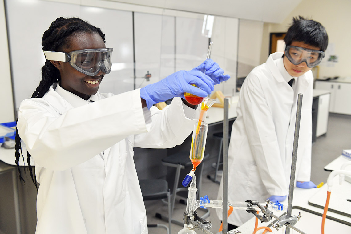 Pupils in a Chemistry laboratory
