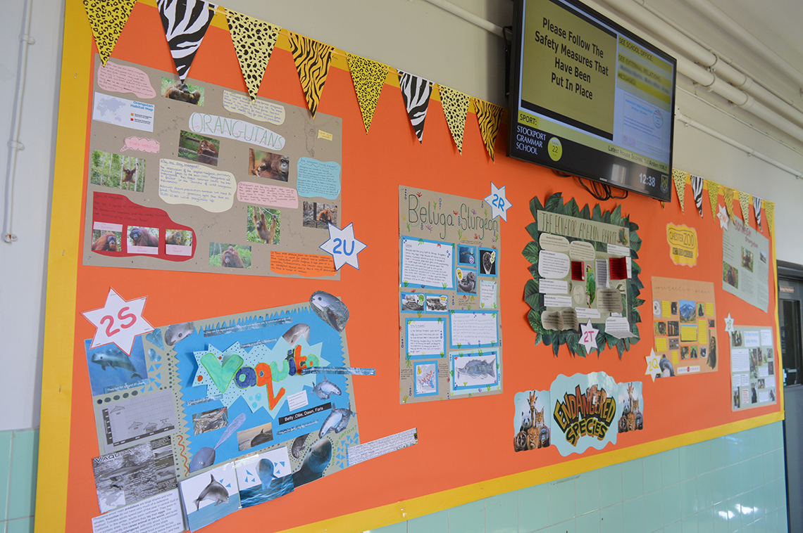 Variety of Life Day display board